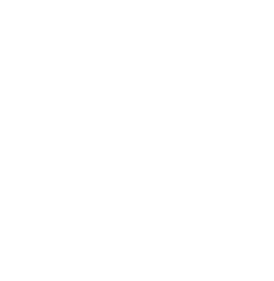 United-We-Stream_Logo_white_300